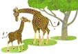 giraffe_fam_ic